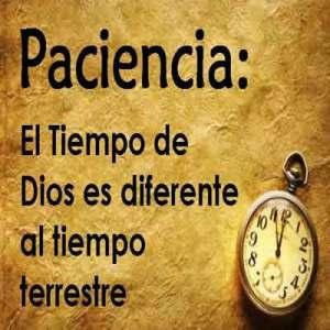 La paciencia en tu vida