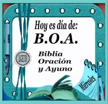 B.O.A.